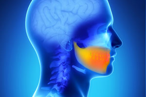 stem cells from teeth to repair jaw bone