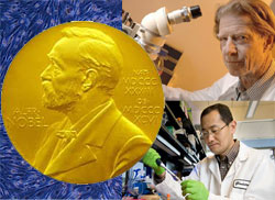 stem cell nobel winners