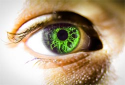 Stem cell discs to repair eyes