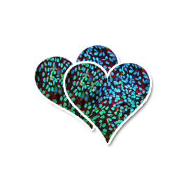 Stem cells to cure hearts